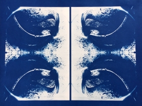 Bill Jones, specimen, (membrane), 2015, cyanotype, 24x30 inches