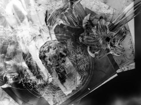 glass flower neg x
