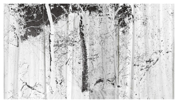 Parochet, 2018, Iris print, 27 x 48 inches (dimensions and support variable)