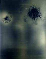 Orectic Object # 1, 1989, unique cameraless silver print on gold paper, 48 x 72 inches. Collection of the artist.