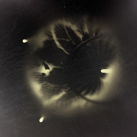 As Above So Below #7, 1989, unique cameraless silver print on gold paper, 16 x 20 inches. Collection of the artist.