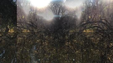 Fountain of Sorrow, 2018, Iris print, 27 x 48