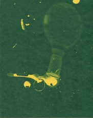 spill 8, cyanotype, 2016, 8x10 inches